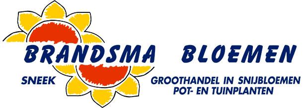 Logo Brandsma bloemen Sneek